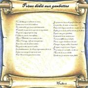 Poème dédié aux gambettes